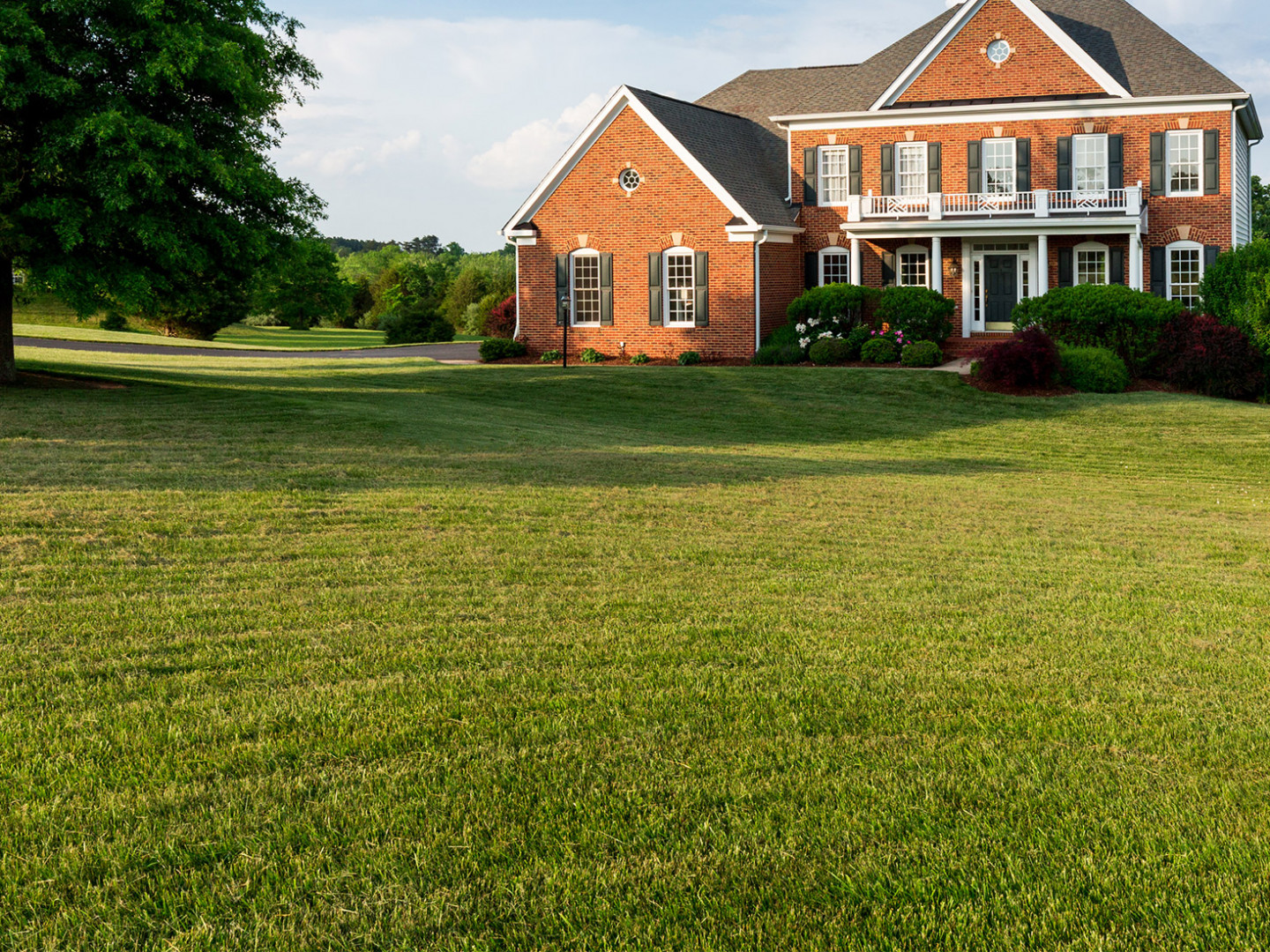 See What Our Lawn Fertilization Experts Can Do